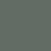 SW9650 Succulent